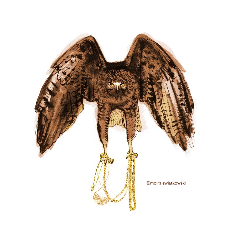 gold hawk