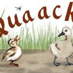 Quack Lessons